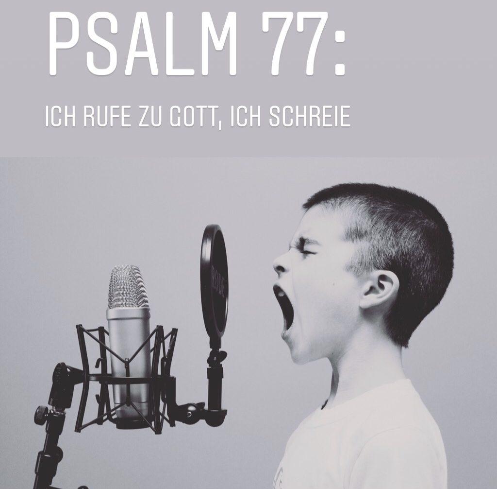 In den #instapray-Stories tauchen zum Beispiel Psalmen auf.